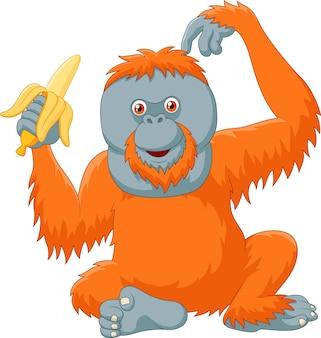 Beeldverhaal grappige orangoetan die banaan eet