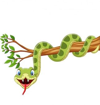 Beeldverhaal groene slang op boomtak