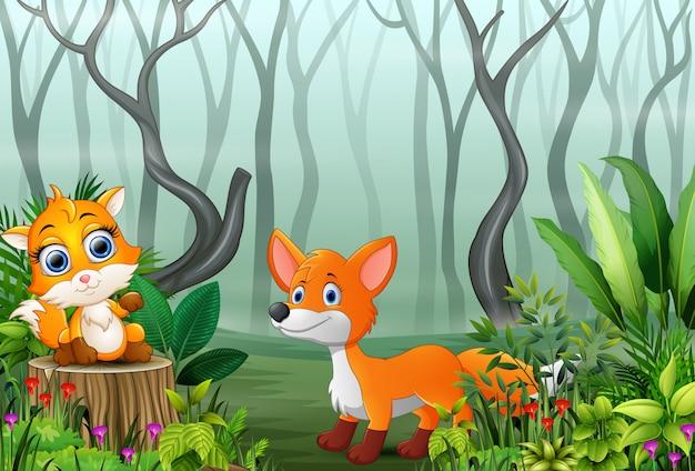 Beeldverhaal twee vossen die in het mistige bos spelen