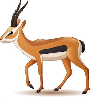 Beeldverhaalantilope op witte achtergrond wordt geïsoleerd die