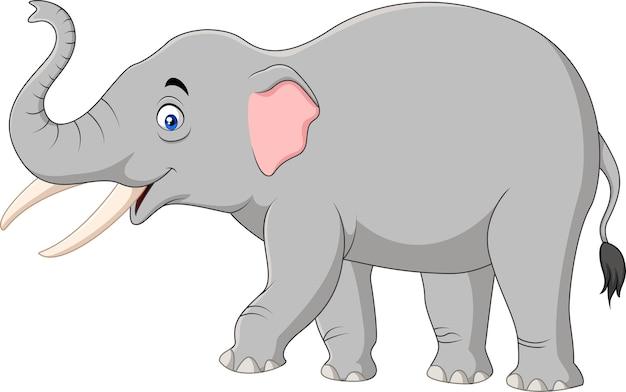 Beeldverhaalolifant op witte achtergrond wordt geïsoleerd die