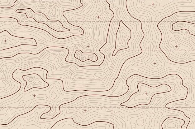 Behang met topografisch kaartconcept