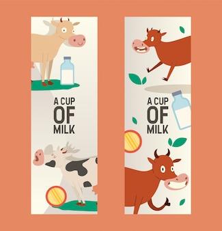 Beker van melk set van banners. nieuwsgierige koe die gras met lege blik eet. grappig babydier, vee dat moo zegt. organische en natuurlijke dagboekproducten.