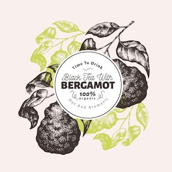 Bergamot tak ontwerpsjabloon. kaffir limoen frame. hand getekend vector fruit illustratie. gegraveerde stijl retro citrus achtergrond.