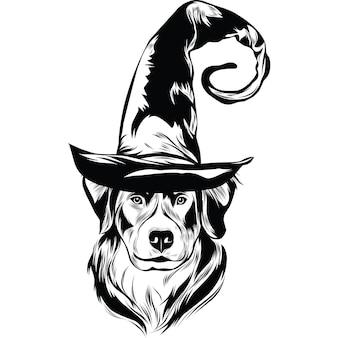 Berner sennenhond hond in heksenhoed voor halloween