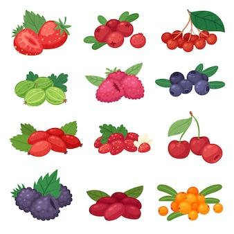 Berry bessen mix van aardbei bosbessen framboos bramen en rode bessen illustratie berrylike set geïsoleerd op een witte achtergrond