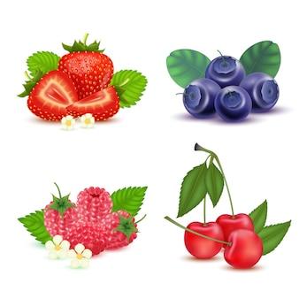Bes zoet fruit geïsoleerd op wit Premium Vector