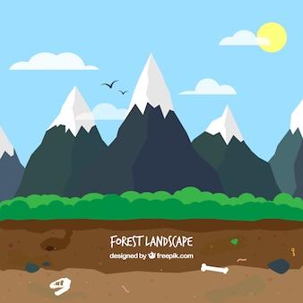 Besneeuwde bergen landschap