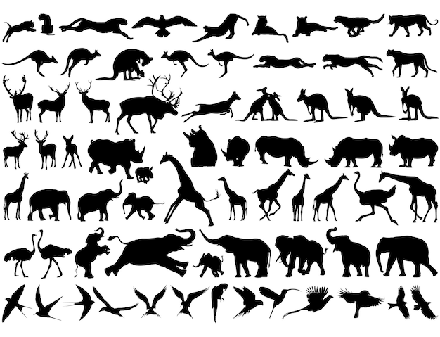 Beste verzameling dierensilhouetten