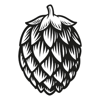 Bier hop geïsoleerd op wit