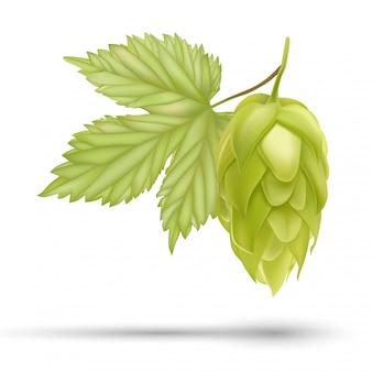 Bier hop plant pictogram.