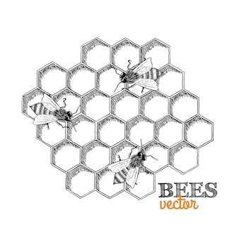 Bijen achtergrond ontwerp