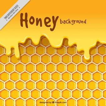 Bijenkorf met honing achtergrond