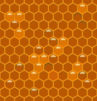 Bijenkorven met honing