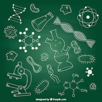 Biologie elementen op krijtbord