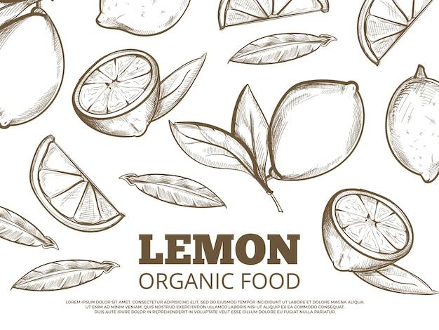 Biologisch voedsel banner poster met hand getrokken citroenen