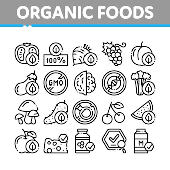 Biologische eco foods collectie icons set