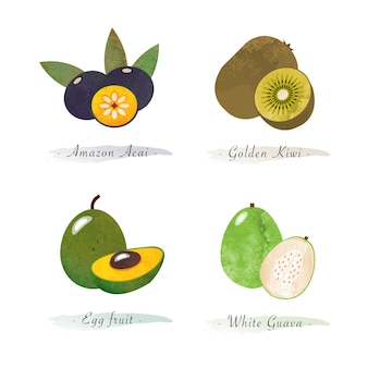 Biologische gezonde voeding fruit amazon acai gouden kiwi ei fruit witte guave