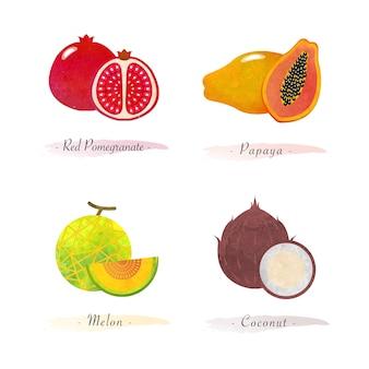 Biologische gezonde voeding fruit rode granaatappel papaja meloen kokosnoot