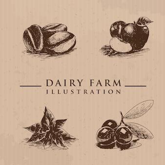 Biologische landbouwproducten in schetsstijl vectorillustratie vee met de hand getekend appels koffiebonen