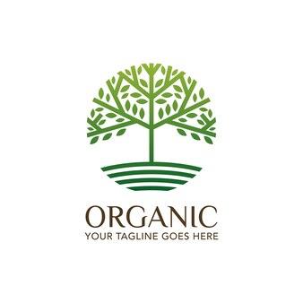 Biologische natuur blad logo sjabloon