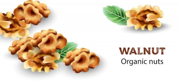 Biologische walnoot noten