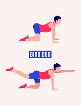 Bird dog oefening mannen workout fitness aerobic en oefeningen