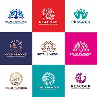 Bird, peacock logo design collectie.