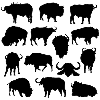 Bison buffalo animals silhouette illustraties