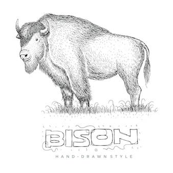 Bison vector, illustratie van een dier in een handgetekende stijl