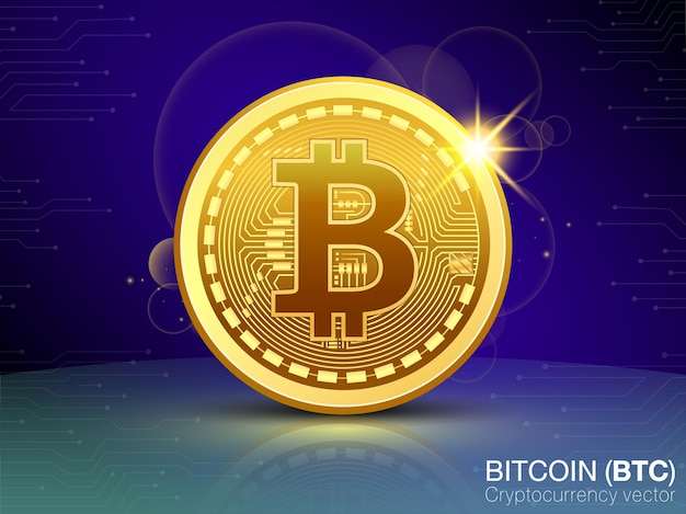Bitcoin cryptocurrency vector