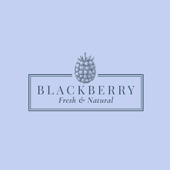 Blackberry abstract teken, symbool of logo sjabloon.