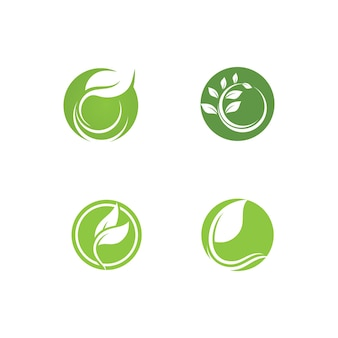 Blad groen plant logo vers vector sjabloon