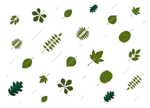 Blad patroon achtergrond. groen blad en witte achtergrond
