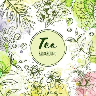 Bladeren achtergrond om thee te bereiden