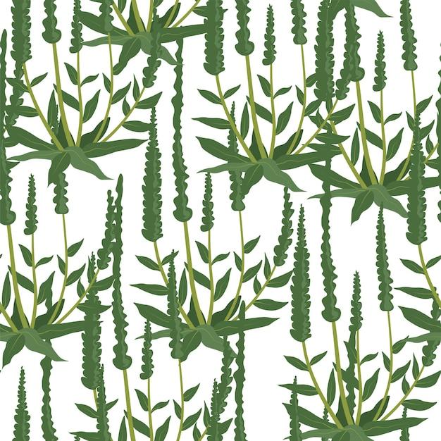 Bladeren en groen, gebladerte van bloemen en planten. wilde bloemen, gras en wildernis. eenvoudig flora en decoratieornament. naadloze patroon of achtergrond, print of behang. vector in vlakke stijl