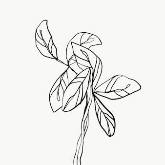 Bladeren en tropische lijn gebladerte geïsoleerd op een witte achtergrond.