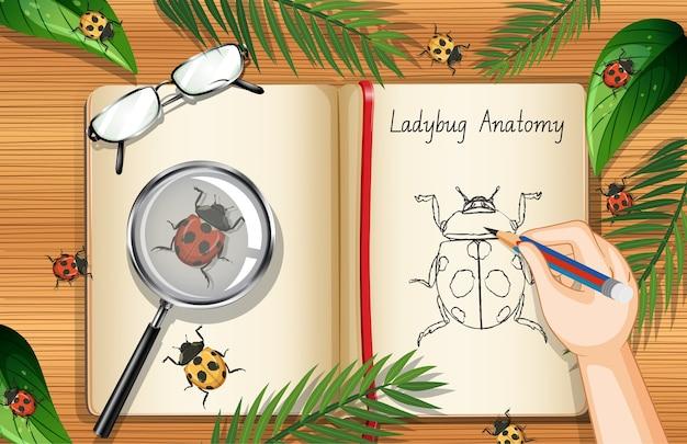 Blanco boekpagina op kantoorwerk tafelblad weergave met bladeren en insecten element