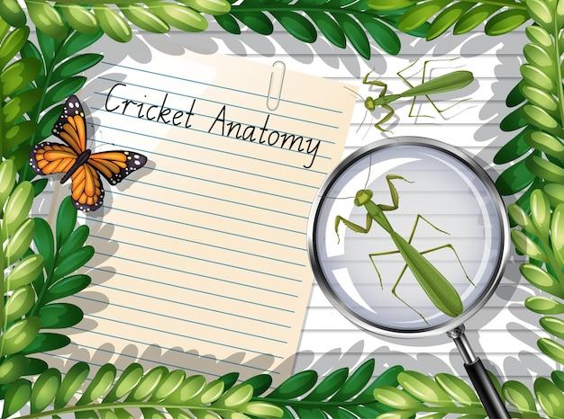 Blanco papier bovenaanzicht met bladeren en vlinder- en bidsprinkhaanelementen