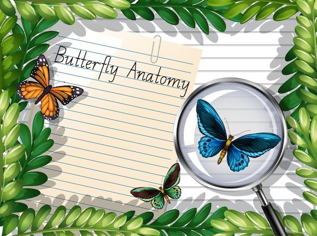 Blanco papier bovenaanzicht met bladeren en vlinderelementen