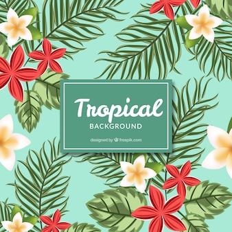 Blauwe bloemrijke tropische achtergrond