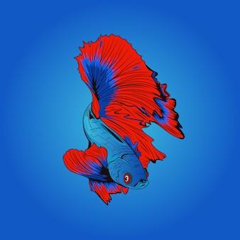 Blauwe en rode betta-vissenilustrations