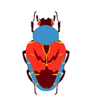 Blauwe en rode platte kever. geïsoleerd op witte achtergrond.