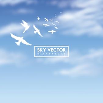 Blauwe hemelachtergrond met witte vogels