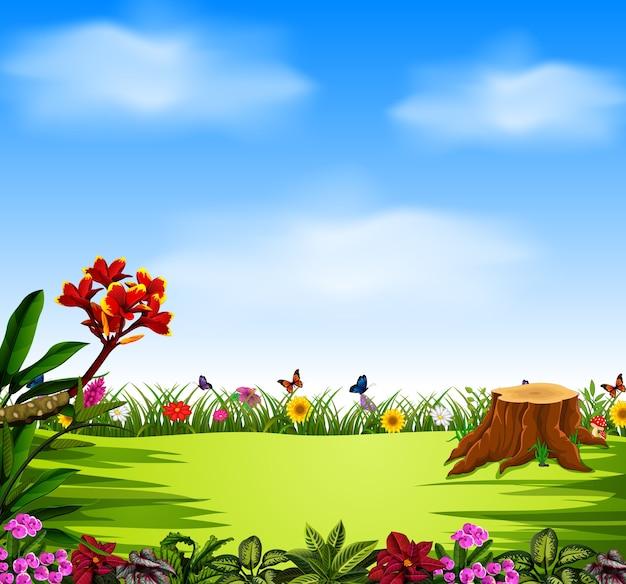 Blauwe lucht en mooie tuin