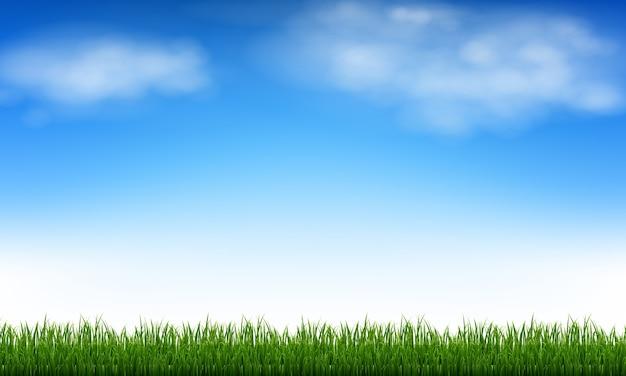 Blauwe lucht en wolken en groen gras met verloopnet, illustratie
