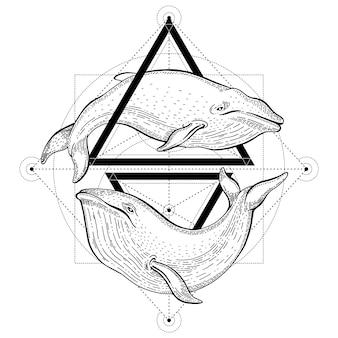 Blauwe vinvis tattoo. geometrische vectorillustratie met driehoeken en zeedieren. schets logo in hipster vintage stijl.
