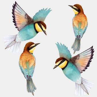 Blauwe vogel handgetekende illustratie collectie