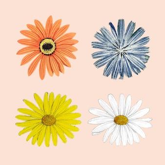 Bloeiende kleurrijke bloem gemengde set vector