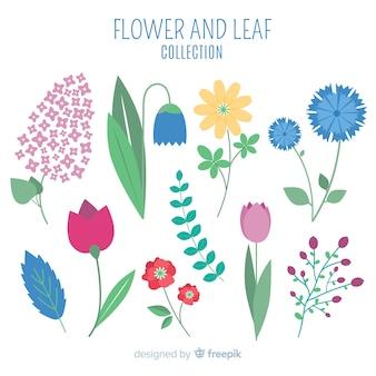 Bloem en bladeren collectie